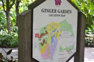 ginger garden